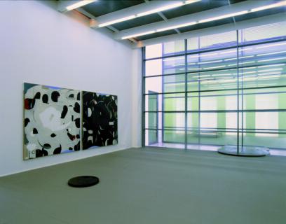 Ausstellungsansicht, Carsten Nicolai: POLYFOTO, 1998, GfZK Leipzig, Foto: Hans-Christian Schink