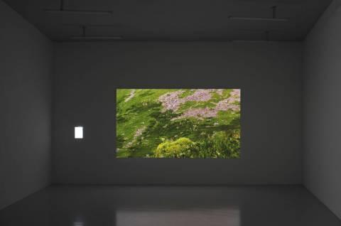 Philippe Parreno: El Sueño de Una Cosa, 2001. Foto: Sebastian Schröder