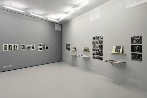 Freundschaftsantiqua, GfZK 2014. Ausstellungsansicht. Foto Sebastian Schröder
