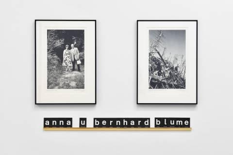 Anna und Bernhard Blume: Waldeslust/Im Holz/Auf der Schwarzwaldhöhe, 2000. Foto: Sebastian Schröder