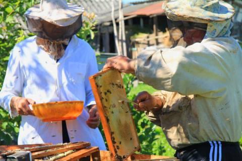 International Village Show, Made in Zvizzchi Foto: Wapke Feenstra