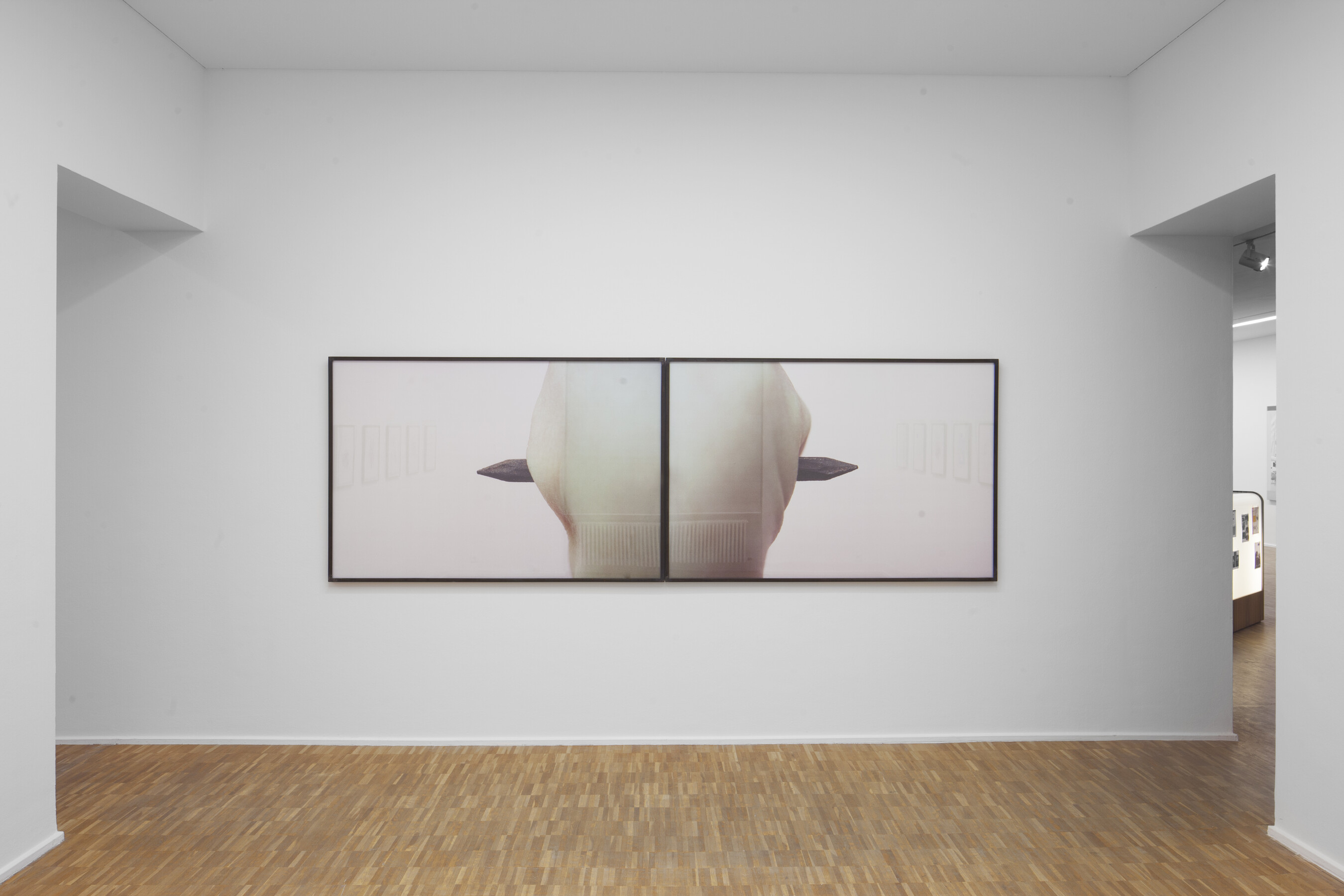 Thomas Florschuetz, Untitled, 1989/1991. Photo: Wenzel Staehlin, The Present Order - Zweiter Teil