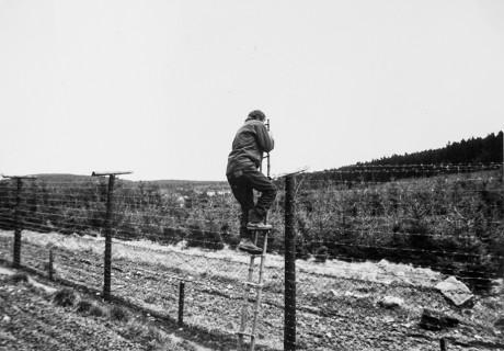 Fluchtversuch mit Leiter, aus dem Archiv Bezpečnostních Složek, Brno-Kanice
