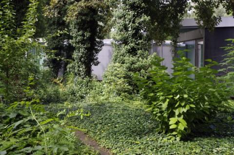 Galerie für Zeitgenössische Kunst, Garten ©GfZK